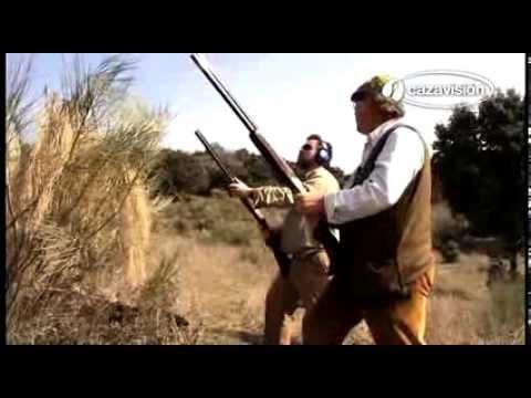 Como atirar aos faisões e aos pombos
