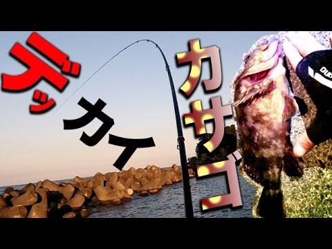 夜の堤防釣りは熱いぞ! デッカサゴ 伊豆大島 Surf-fishing