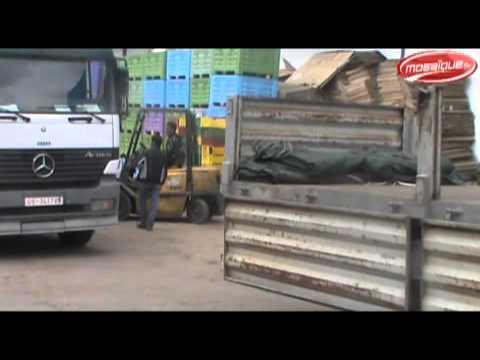image vidéo حجز 1400 طن من البطاطا بالهوارية