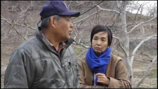 写真家 大石芳野さん 梁川の果樹農家を訪問
