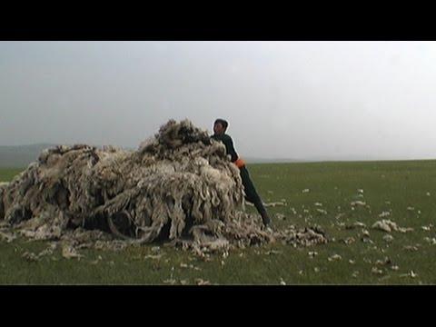 Mongolian Felt Making