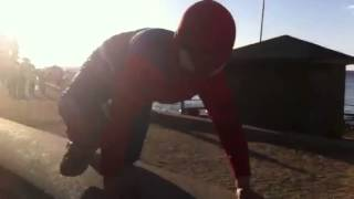 Spiderman en algarrobo