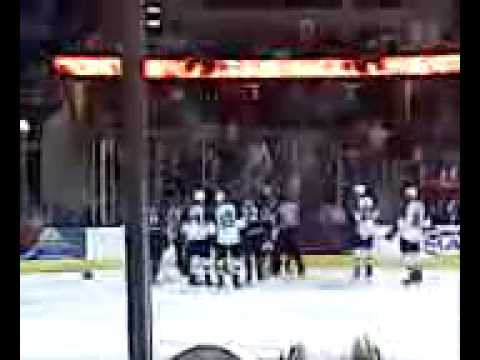 Lake Erie Monsters Fight (4/11/09) Video