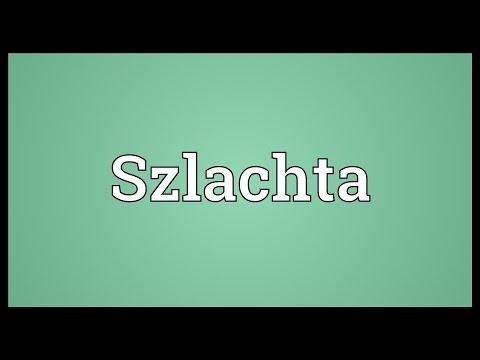 Header of szlachta
