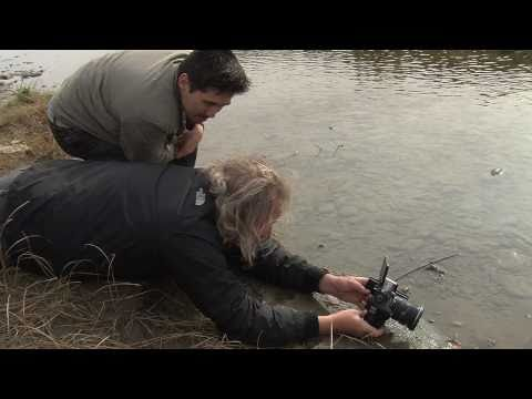 Canon 60D Field Test with Mike Drew