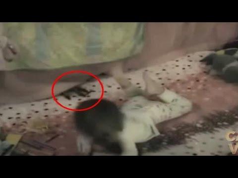 5 Ataques Demoníacos a Niños