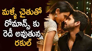 Rakul Preet Singh Ready To Again Romance With Naga Chaitanya | Latest Telugu Movie News