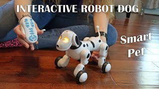 👀 ROBOT DOG LEOKING INTERACTIVE REMOTE CONTROL SMART PET REVIEW ⭐