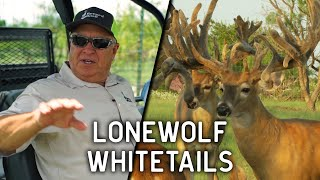 Outstanding Texas Whitetail Deer at Lonewolf Whitetails | Deer and Wildlife Stories