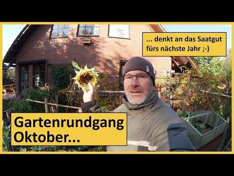 Gartenrundgang Oktober - Saatgut nicht vergessen