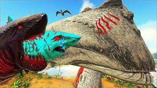 BABY SHARK O BEBÊ TUBARÃO - Á LENDÁRIA BALEIA LEVIATÃ ME SALVOU  ! Dinossauro Ark Animals Evolved