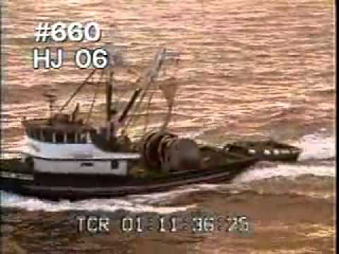 Commercial Fishing 1 - Fishing Boats - Fish - Best Shot Footage - Stock Footage