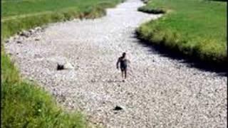 Vídeo 48 de Boi Caprichoso