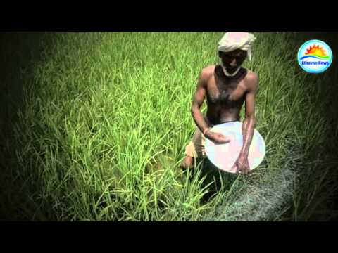 Jaffna agriculture issue promo