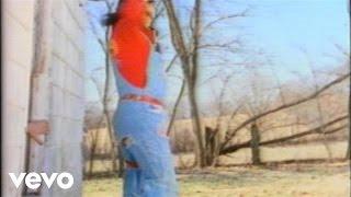Watch Kentucky Headhunters The Ballad Of Davy Crockett video