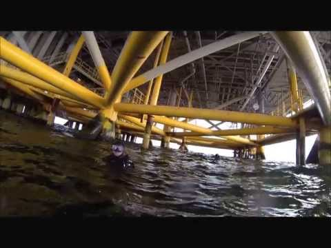 Diving the Oil Rigs of Southern California