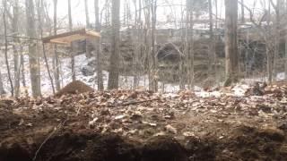 Arrowhead finds at Western Kentucky ice cliffs 2-15-14