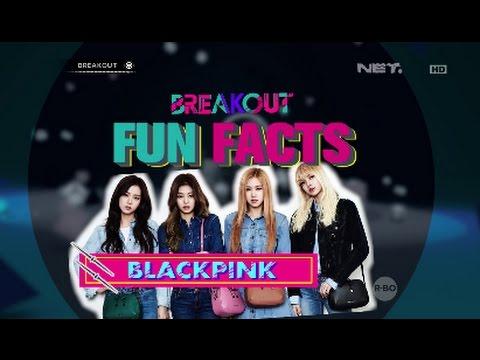 download lagu Breakout Fun Facts - Black Pink gratis