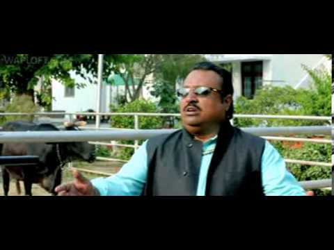 Bullet Raja Theatrical Trailer)(wapking Cc) video
