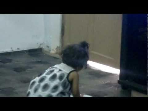 Zoni Lakri Ki Kati video