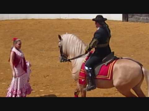 Spectacular dance by  Andalucian Horses! For Dance Lovers..wmv