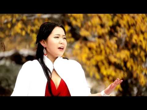 Iluu Sartai Namar video