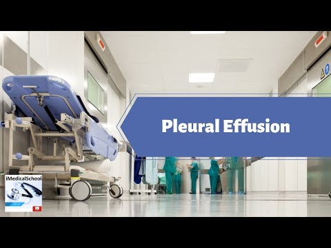 Medical School - Evaluation of a Pleural Effusion