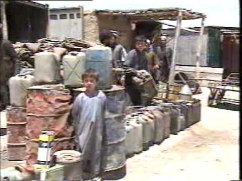 Kiwi in Kabul