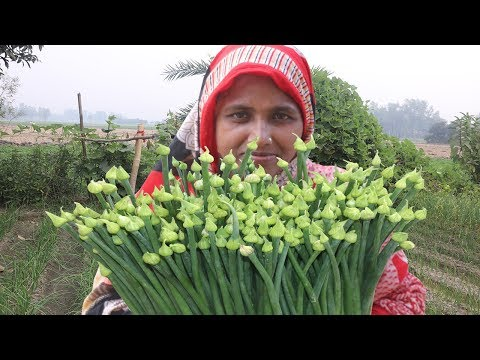 Peyaz Fuler Ful Puli Pitha Recipe Spring Onion Harvesting FARM FRESH Onion Flower Curry Village Food