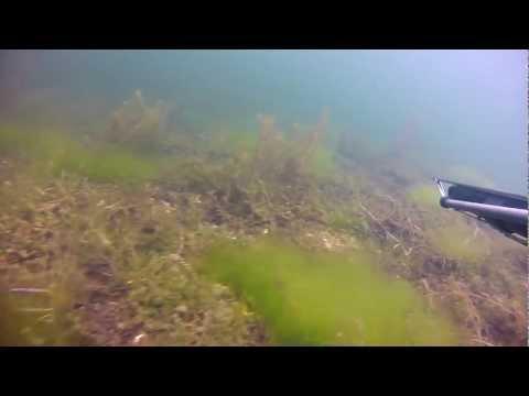 Озеро Валдайское под водой осень