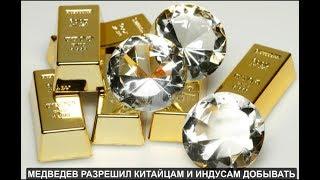 Медведев разрешил китайцам и индусам добывать наше золото