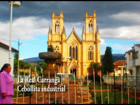 LA REAL CARRANGA - Cebollita Industrial