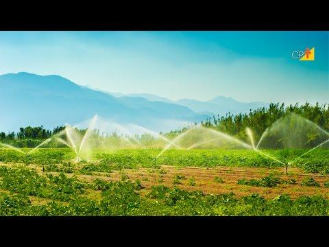 Clique e veja o vídeo Curso a Distância Manejo de Irrigação - Quando e Quanto Irrigar