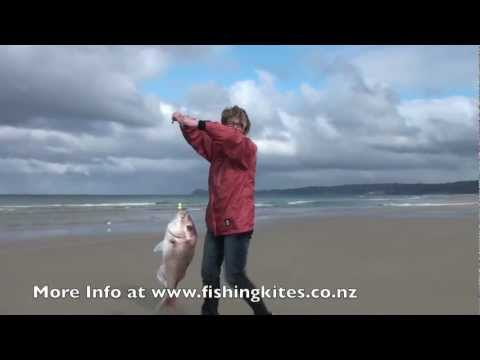 Kitefishing from the Shore - Uretiti Beach Fishing