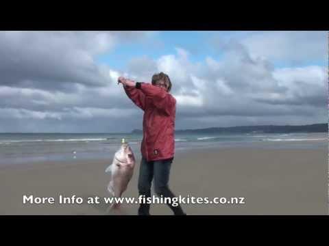 Kitefishing from the Shore - Uretiti Beach Fishing