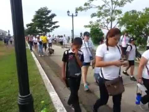 Caminata Mundial en Apoyo al Pitbull y razas Denominadas PPP (Panama)