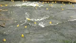 Ken-Ducky Derby 2009