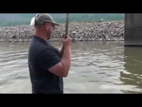Tioga Co. PA fishing hot spot