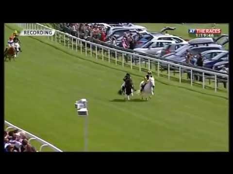 Shetland Pony Race