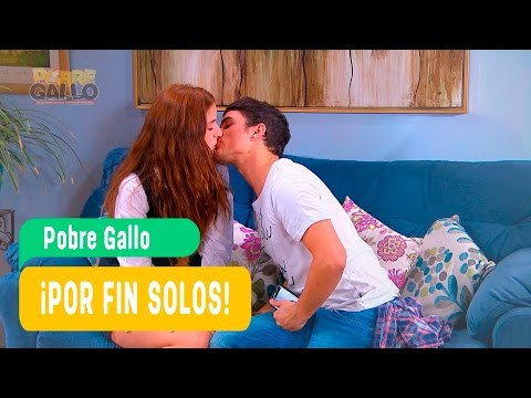 Pobre Gallo - Andrea y Borja Capítulo 81