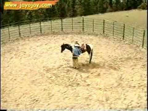 Horse Training Video: 8 of 12 Music Videos