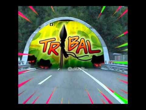 DJ Mouse - La Musica Tribal (Tribal Flow Mix)
