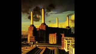 Watch Pink Floyd Pigs (Three Different Ones) video