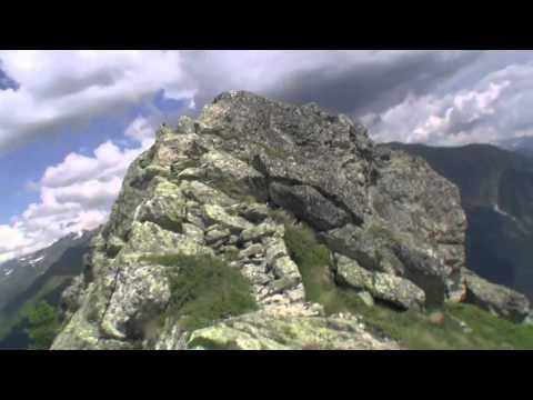 Звери - Камикадзе