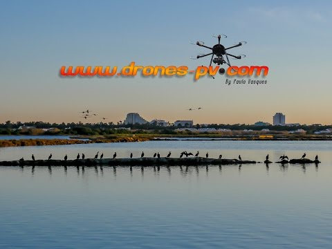 VRSA, Castro Marim - Reserva Natural do Sapal  - Drone a�rial view  By Paulo Vasques - Drones-pv