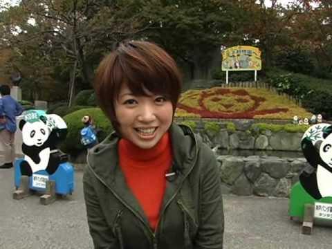 王子動物園の音図鑑(動画版) VOL 1