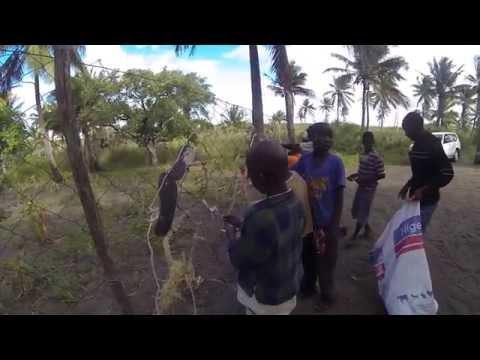 Diving Mozambique - Zavora Marine Lab