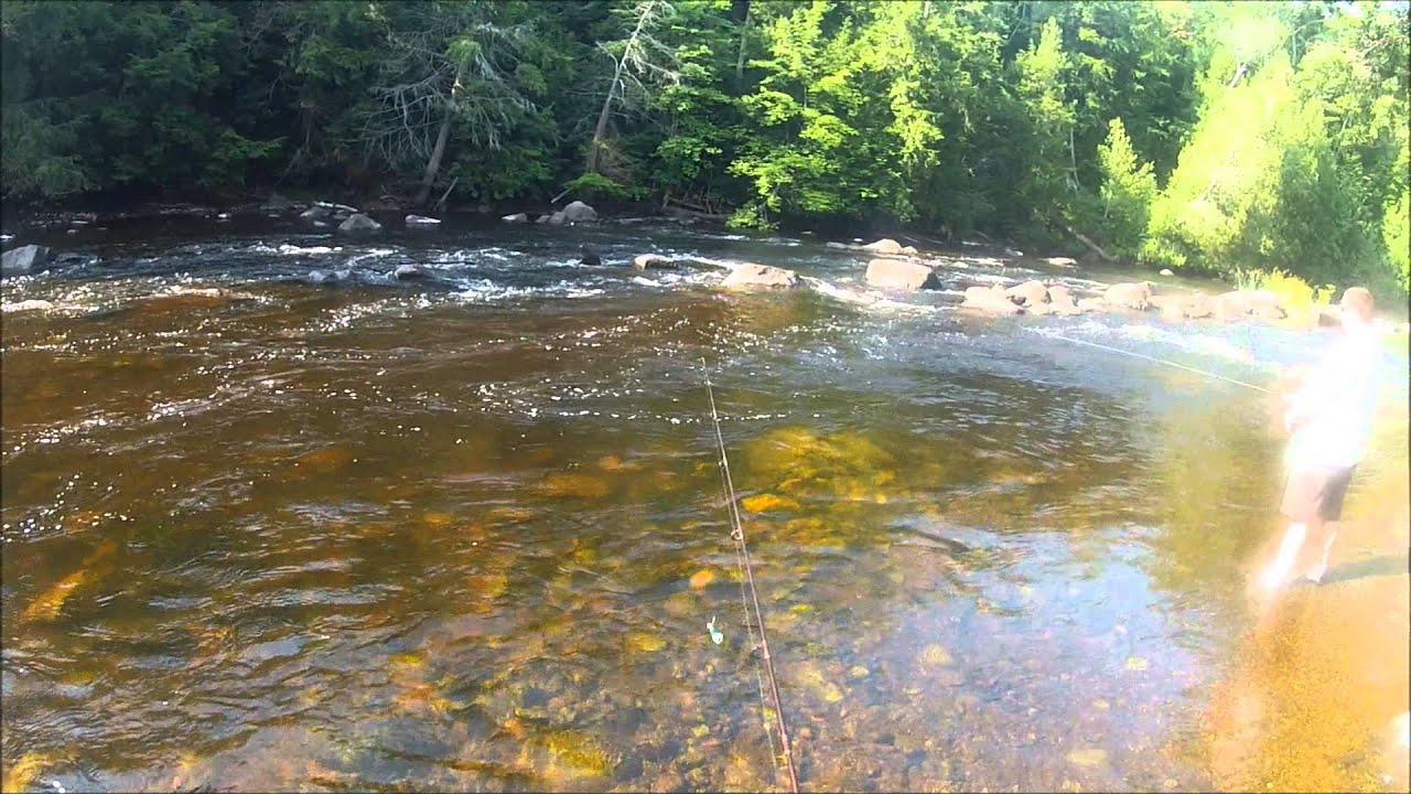 Peshtigo river fishing in wisconsin youtube for Wisconsin out of state fishing license