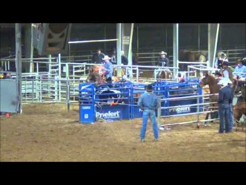 open rodeos in texas