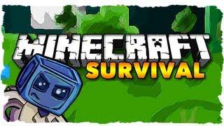 Minecraft Survival - DAMN WARTS! (Ep. 45)